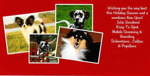 2007_holiday_card2